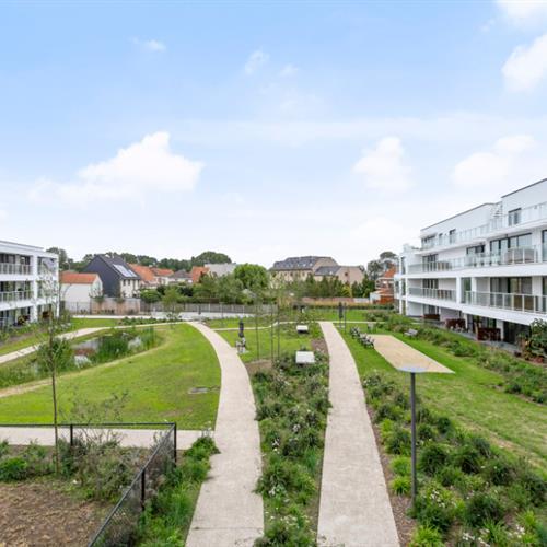 Nieuwbouw te koop Veurne - Caenen 2647466 - 514580